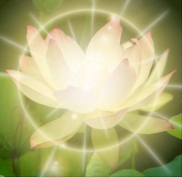 Percorso di meditazione gratuito