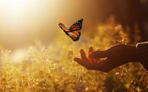 mano-con-farfalla